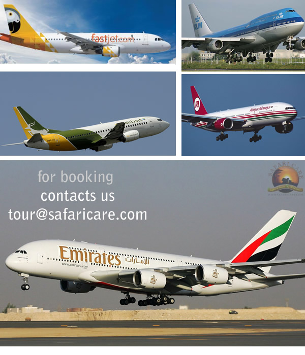 Flight Booking Tanzania